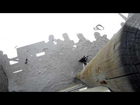 Penguins and a St. Louis Rams Visor – Boulders Beach, South Africa – November 2011