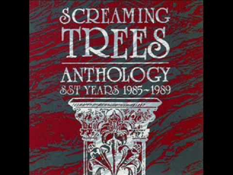 screaming-trees-grey-diamond-desert-senor-arcadio