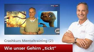 """Crashkurs Mentaltraining (2): Wie unser Gehirn """"tickt"""""""