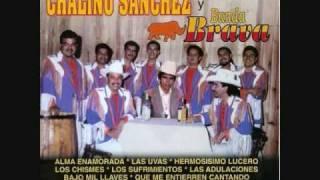 Chalino Sanchez y Banda Brava-Flor Margarita