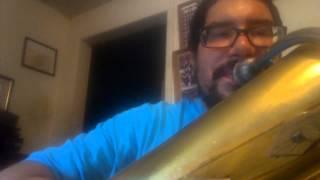 The Flintstones Theme (on tuba)