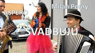 Skupina ASPERO a Milan Perný na svadbe