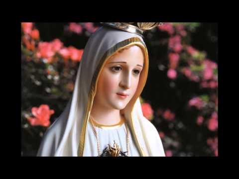 Meditação de São Luís Maria Grignion de Montfort, A Rainha dos Céus