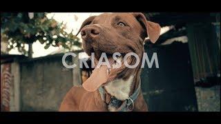 CriaSom | Delacruz - Quem Diria (Prod. GU$T)