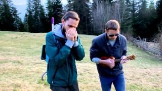 Hallelujah - Leonard Cohen (harmonica cover)