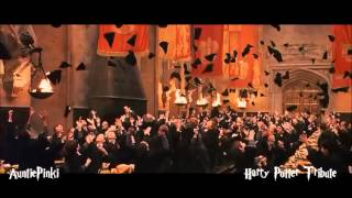 Hall of Fame (Harry Potter tribute)