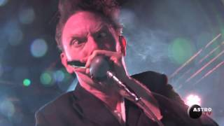 "LEGENDARY SHACK SHAKERS ""Bullfrog Blues"" Live @ L'Astrolabe - Orléans // ASTROTV"
