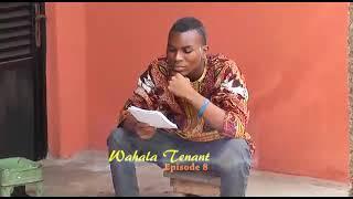 Wahala tenant width=