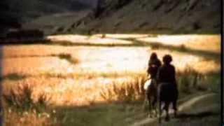 Manu Chao - La Mentira