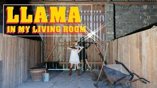 AronChupa, Little Sis Nora - Llama In My Living Room   Violin Music Video  Joanna Haltman