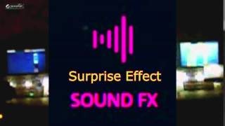 Surprise Effect - SOUND EFFECT