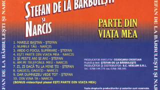 Stefan De La Barbulesti   Arde o Focul Suparare