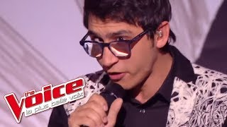 Vincent Vinel - « Take On Me » (A-ha) | The Voice France 2017 | Live