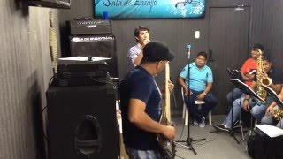 Cover Flor Palida Ensayo Andy H