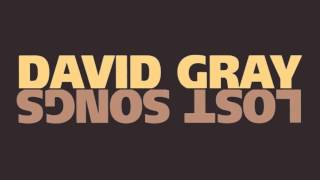 "David Gray - ""Hold On"""