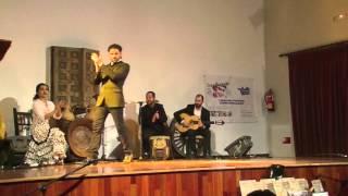 Flamenco Live - Actuacion en Torremolinos 2016
