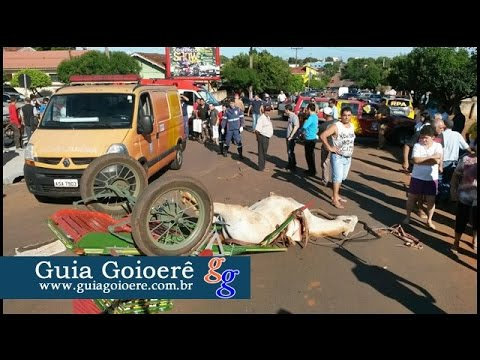 Acidente entre automóvel e carroça deixa uma pessoa desacordada na Marinho Tavares