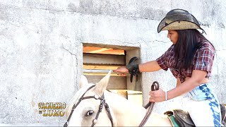 Vaqueira Cigana -  Vaqueiro de Luxo