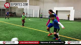 Halcones JC vs. Halcones FC Liga San Francisco de Chicago Il