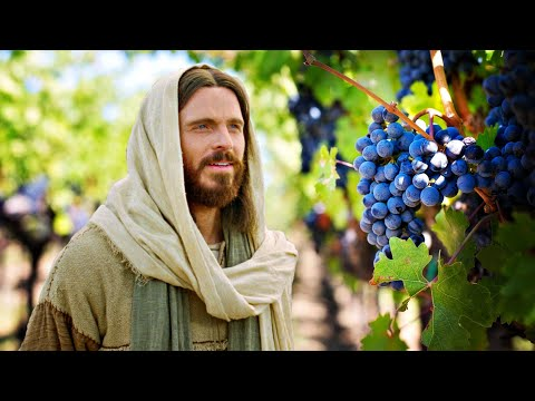 Sagrada Escritura - Jesus declara: