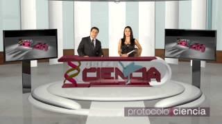 Protocolo Ciencia 18 Oso Invictus