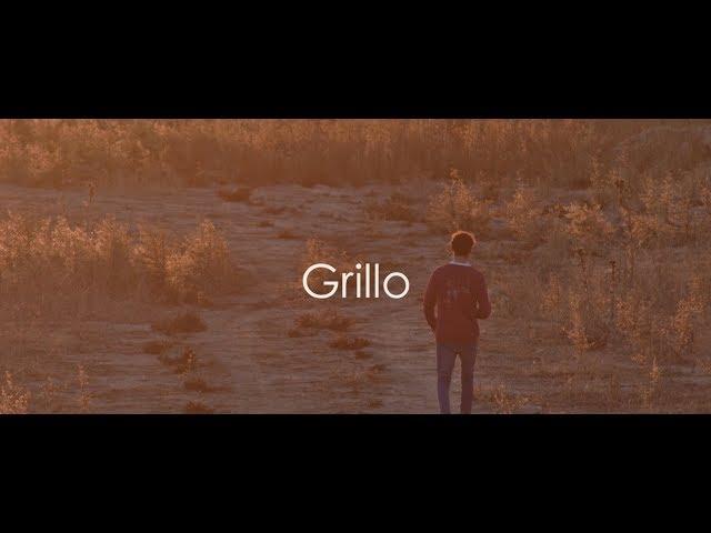 Videoclip oficial de la canción Grillo de Richi Gasset