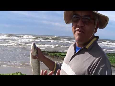 De motorhome | Torres | praia do sul | parque da guarita | parte RS 30 em 2017