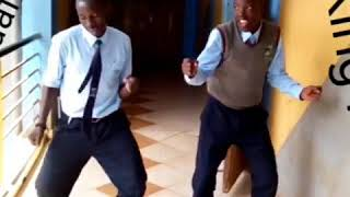 LAMBA LOLO THE BEST ODI DANCE EVER