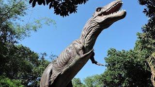 """Vale dos Dinossauros, """"Dreamland"""", Foz do Iguaçu,PR."""