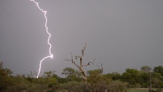 Amazing lightning bolts and thunder storm in Southern Africa
