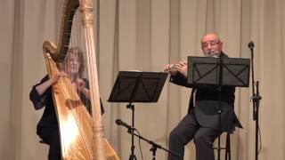 Can't Help Falling In Love  Instrumental Nagy Duo: Flute & Harp - Live Performance - Emotional Music