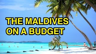 Visit the Maldives on a Budget!