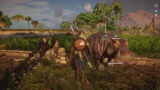 My pet hippo in Assassin's Creed Origins!