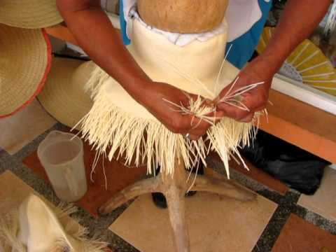 Constructing a Panama hat in Ecuador October 2011