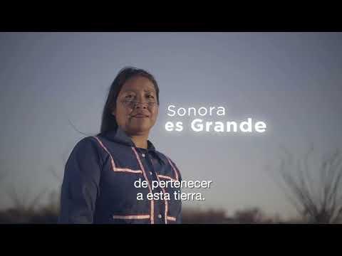 En Sonora somos ejemplo de liderazgo