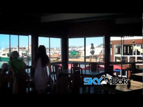 Skybok: Oyster Catcher (Port Elizabeth, South Africa)