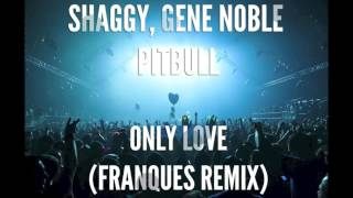 "Shaggy, Gene Noble & Pitbull ""Only Love"" (Franques remix)"