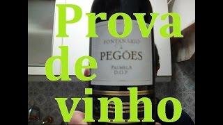 Prova de vinho tinto Fontanário de Pegões