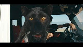 Filatov & Karas - Lirika feat. Rada (Fantazëp Video)