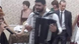 formatie nunta Bucuresti.formatie nunta Buzau.formatia Nicoleta Buga 0749979012