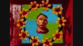 Marcy Playground-Ancient Walls of Flowers