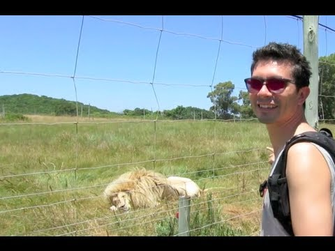Seaview Lion Park in South Africa