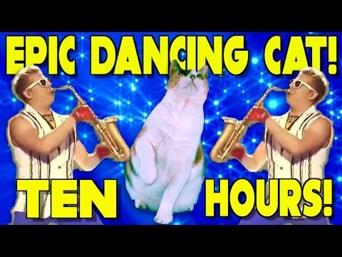 10 HOURS of Epic Victory CAT DANCE!!!
