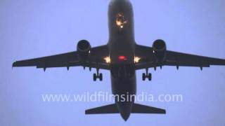 Wheel-whell lets tyres down, before plane lands in Delhi