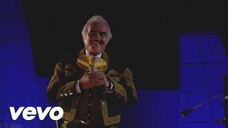 Vicente Fernández - Amor Mío (En Vivo)