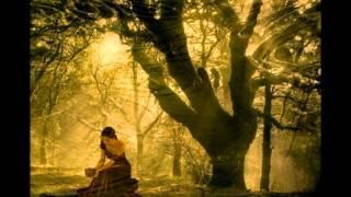 Dindi - Claudia Telles (dedicado a Sylvinha Telles)