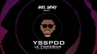 Ariel Sheney - YSSPDD ( Audio officiel )