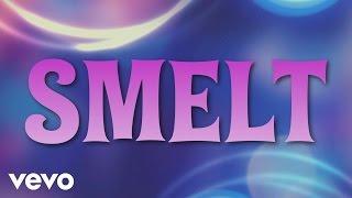 Femke Meines - Smelt (Lyric video)