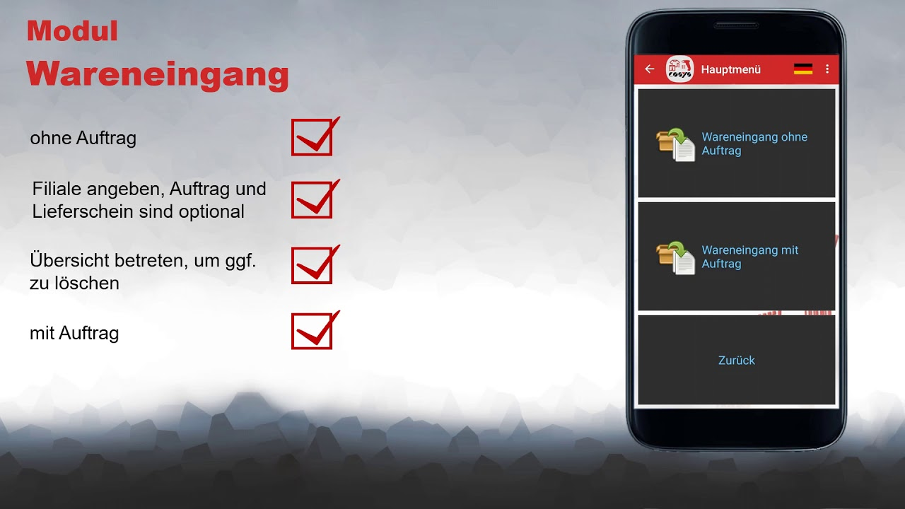 Wareneingang im Filiallager dokumentieren | COSYS POS Non Food Demo