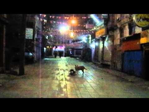 Freak Street afther midnicht Nepal
